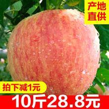 包邮 苹果水果新鲜一箱红富士整箱10斤应季当季水果批发现摘丑苹果