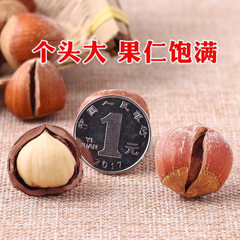 东北特产大榛子野生新鲜铁岭原味孕妇干果开口榛子坚果炒货 500g