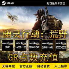 PC Chinese Game Steam Ghost Action Wilderness GR Points Recharge GR Points Second Season Tickets