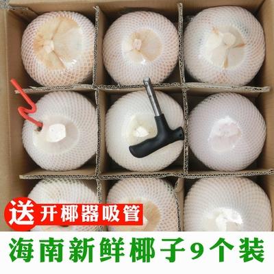9个装海南新鲜夏季水果新鲜青皮去皮青嫩甜椰子椰青解渴