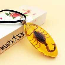 子儿童男女学生情侣礼品人工琥珀项链吊坠昆虫创意饰品蝎