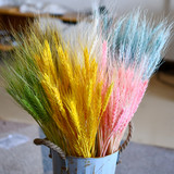 Natural dried flower interior decoration barley bouquet wheat shooting prop home art