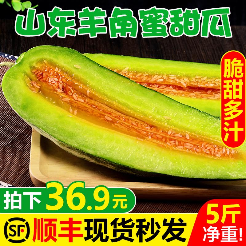 【现摘现发】山东羊角蜜甜瓜5斤新鲜应季水果脆甜小香瓜3当季包邮