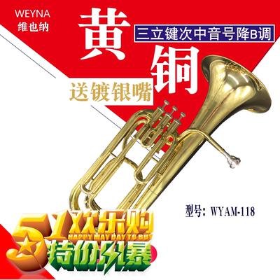 西洋乐器大号