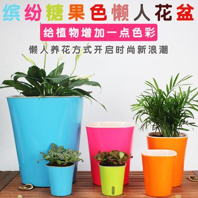 彩色懒人自动吸水储水花盆水生植物盆绿植盆栽可水培两用花盆P511