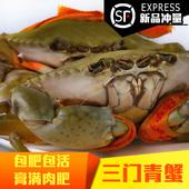 包邮 海鲜礼盒 三门青蟹鲜活红膏蟹红鲟母蟹海蟹特大螃蟹膏蟹非野生