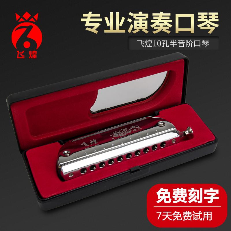 口琴初学者成人高级12孔自学专业演奏
