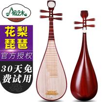 包邮粉色小琵琶彩绘演奏初学入门练习红木琵琶乐器儿童琵琶