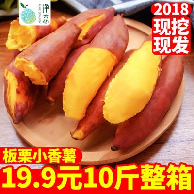 现挖黄心板栗小香薯红薯 超甜红薯新鲜批发包邮10斤 农家自种地瓜