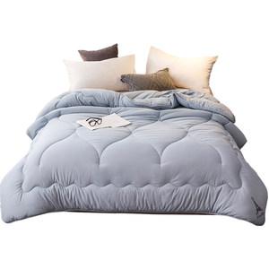 紫罗兰被子冬被棉被春秋被加厚保暖单人宿舍夏凉被芯双人空调被褥