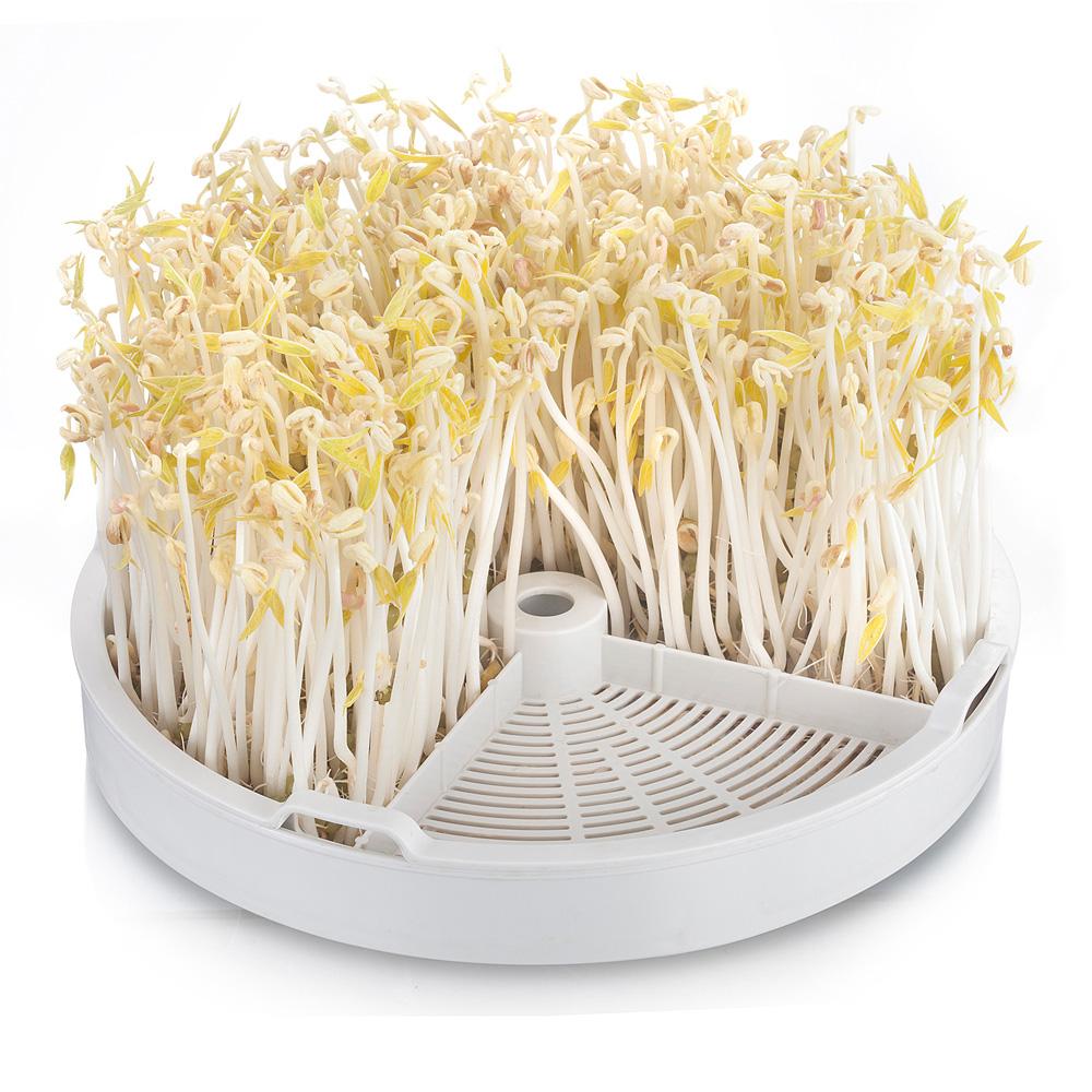 小熊豆芽机智能全自动家用双层大容量 多功能发豆芽机生绿豆芽机