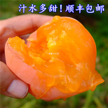 Beijing Mopan big persimmon soft sweet farm fruit big persimmon fresh pot persimmon frozen persimmon wild persimmon