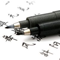 3支包邮 日本zebra斑马秀丽笔小楷软笔练字笔中楷极细笔书法软笔