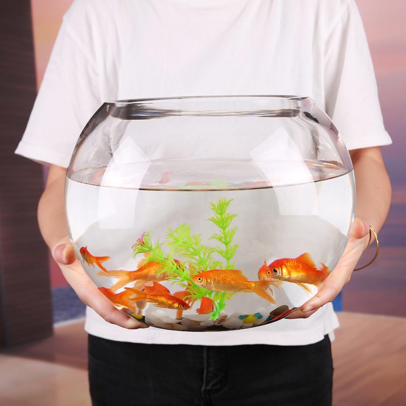 金鱼 玻璃鱼缸 加厚
