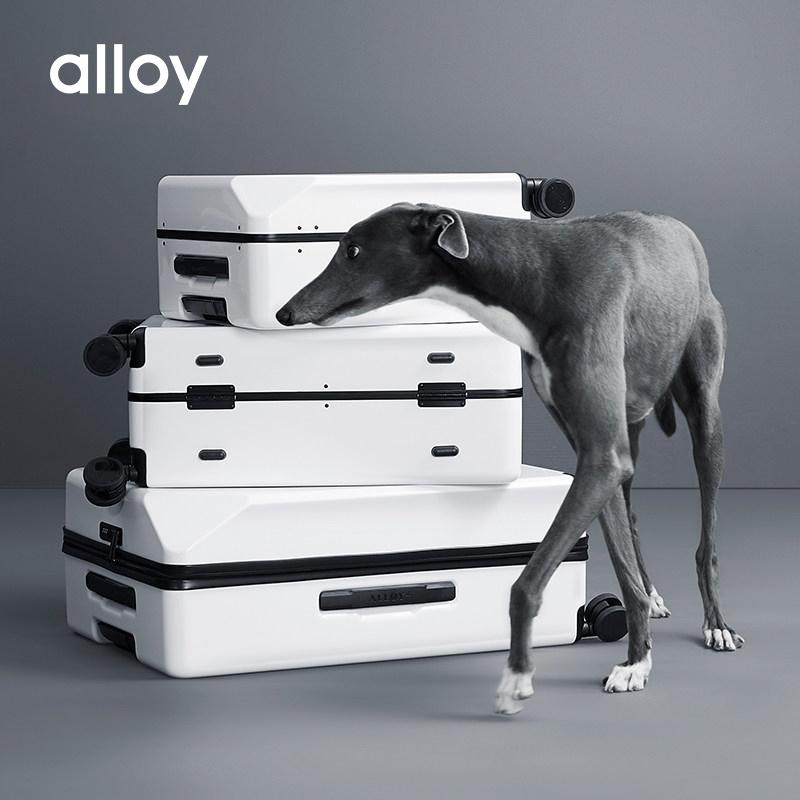 alloy/乐几行李箱 网红ins旅行登机拉杆小箱子女男20/24寸万向轮