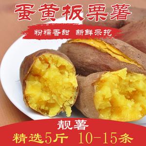 2018新采 蛋黄板栗香薯蜜薯红薯粉甜番薯 新鲜农家自种 5斤包邮