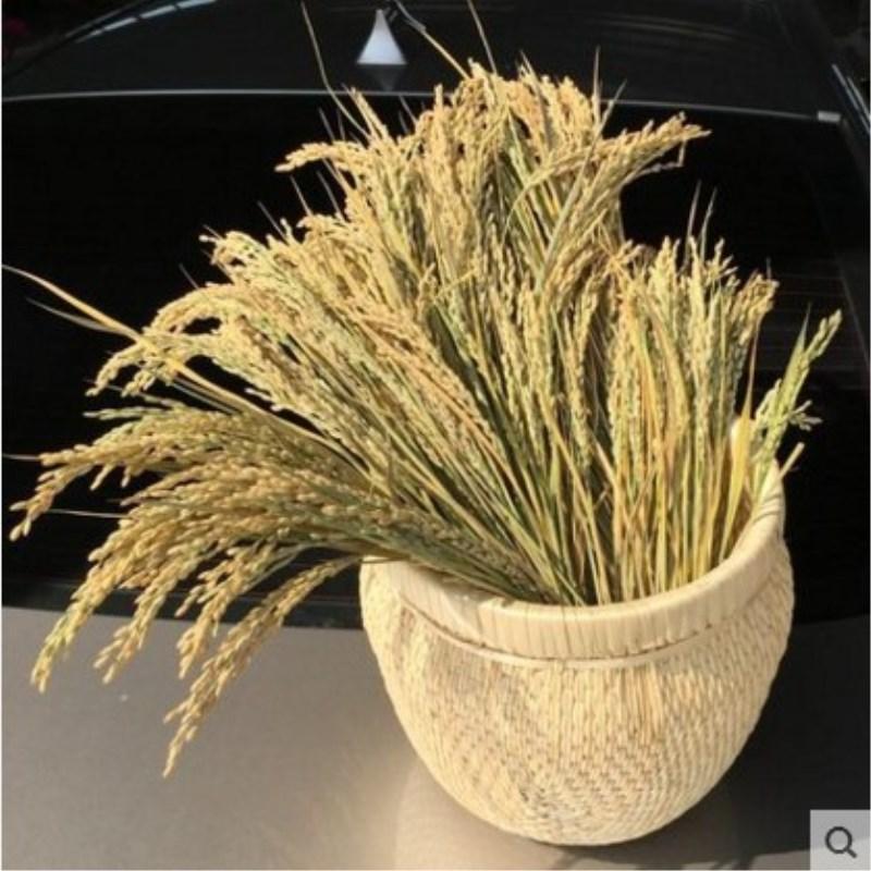 五谷杂粮装饰