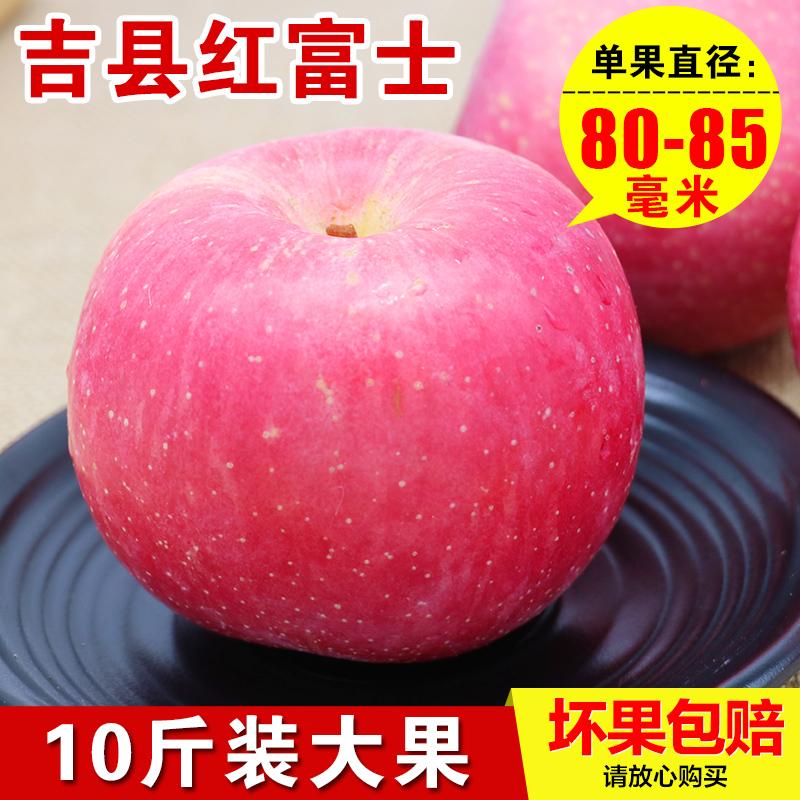 宏口福 吉县红富士苹果山西壶口冰糖心苹果孕妇水果新鲜10斤包邮