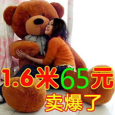 轻便超大女孩可爱的1米6的熊娃娃 泰迪熊瞌睡熊小熊熊熊1.6米