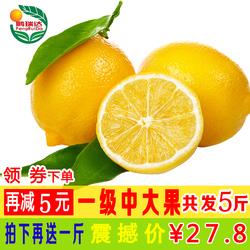 鹏瑞达 2019新果子安岳黄柠檬4斤一级中果新鲜采摘孕妇水果批发