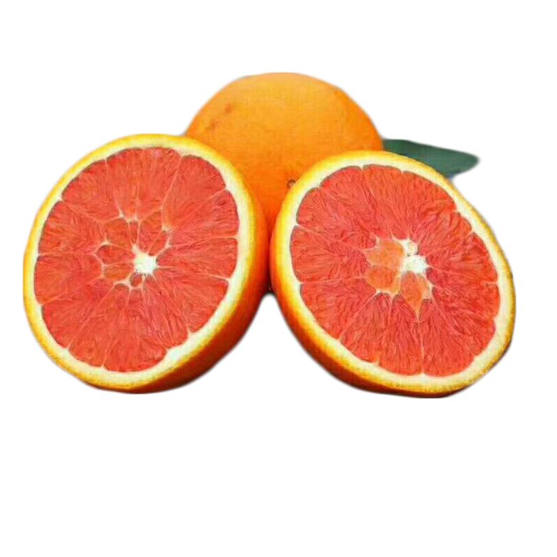 正宗湖北伦晚夏橙子中华红橙秭归脐橙新鲜水果中大果5斤当天采摘