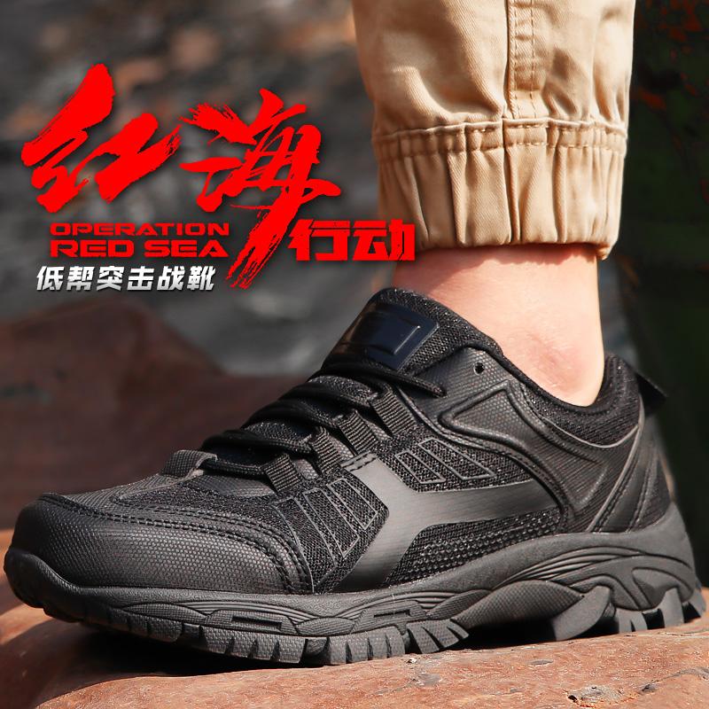 Обувь для туризма / Лыжные и сноубордические ботинки Артикул 588361018902