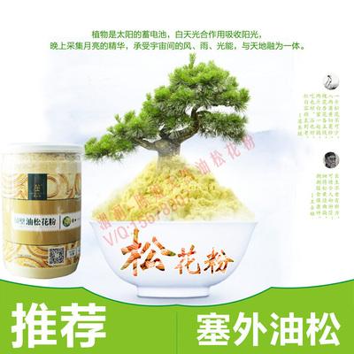 陈姐塞上松 野生东北油松 无糖无添加 罐装 松花粉 150g