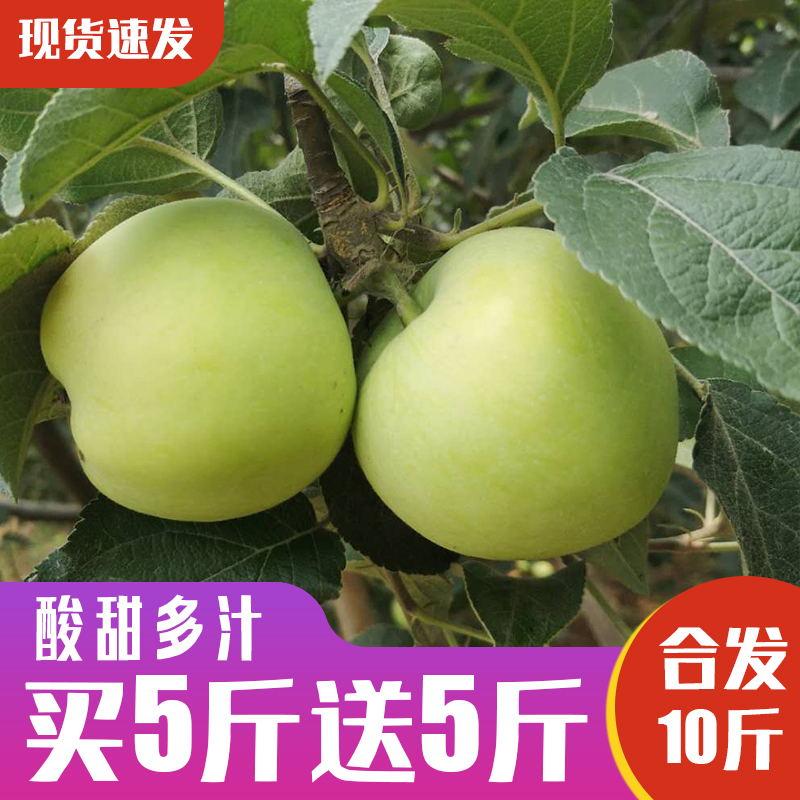 青苹果水果现摘新鲜酸脆孕妇水果应季水果整箱10斤吃的包邮美八