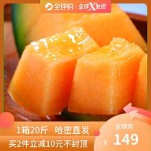 甜蜜之都新疆直发哈密瓜超甜西州蜜17号4个装带箱20斤鲜水果包邮