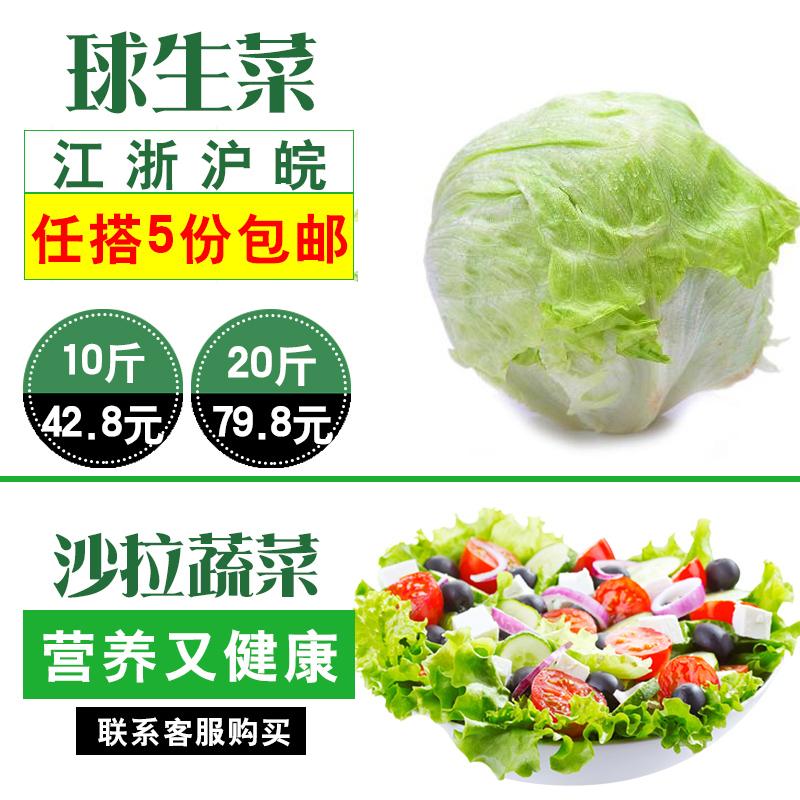 球生菜 500g新鲜蔬菜沙拉食材汉堡用即食球形西生菜圆生菜5斤亲朋棋牌下载