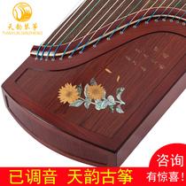 古筝初学者儿童大人新手考级入门专业教学乐器兰考实木泡桐古筝