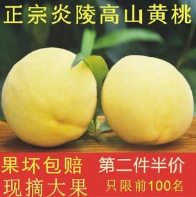 炎陵高山黃桃10斤禮盒裝超甜無公害新鮮水果農家果園直銷湖南包郵