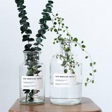 北欧花瓶ins风宜家家居装饰花器摆件饰品透明玻璃瓶水培花瓶