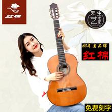 专卖店 36寸 红棉古典吉他34 39寸单板尼龙30儿童左手电箱吉他