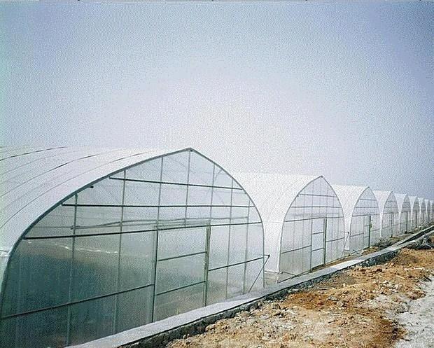 环保工程膜厨房农资盖布仓库耐拉伸建筑用产品包装长塑料薄膜果园