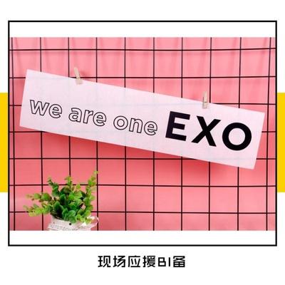 EXO周边伯贤灿烈世勋同款手幅五辑TEMPO专辑回归纪念应援手幅