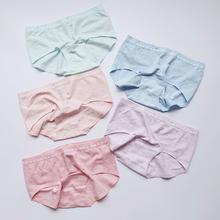 紧身裤的好帮手  纯棉大弹力透气舒柔无痕内裤 中腰女士三角内裤