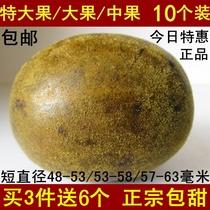 盒广西2送10果干泡茶包散装买桂林特产百寿轩罗汉果芯果仁茶