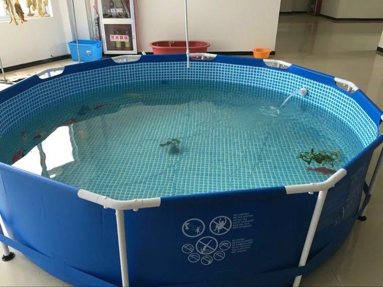 刀刮布鱼池暂养池支架水池夹网材料环保锦鲤鱼缸可移动金属金鱼池