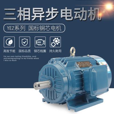 厂家直销YE2三相异步电动机马达全铜线国标380v交流电机0.55-15kw