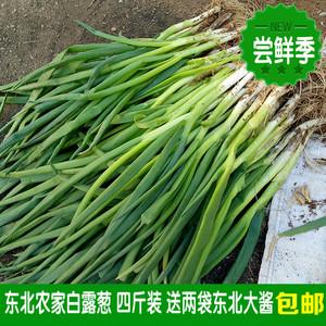 小葱东北新鲜白露葱发芽葱蘸酱菜香葱农家蔬菜1份4斤送两袋酱包邮