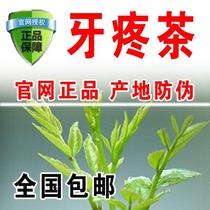 500g一级浓香型高山绿茶散装茶叶散装罐装新茶2019