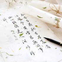 带书写横线小清新文艺风渐变色信笺信札可爱彩色信纸创意日韩文具信封信纸套装