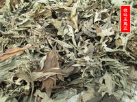 5 kg loaded wild Dragon Boat Ai Ye Chen Ai grass leaves bathing feet month cold drive dry wet wormwood system cashmere