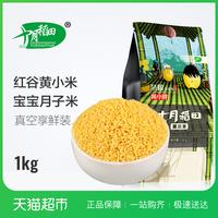 五谷杂粮黄小米