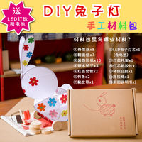 Big rabbit paper lantern DIY handmade material package children's homemade pig year Lantern Festival Lantern luminous drag toy