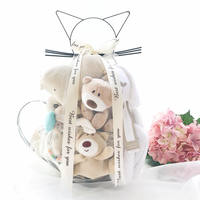 Newborn baby toy gift box high-end full moon gift mother and baby baby supplies set hundred days gift basket
