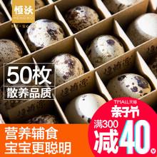 鹌鹑鸟蛋 包邮 新鲜鹌鹑蛋生 50只恒沃散养精品可代煮宝宝营养辅食