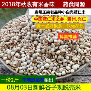 新鲜薏米现脱壳白薏米糯薏仁米贵州兴仁药小粒薏苡仁五谷杂粮2斤