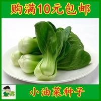 苏州青菜种子